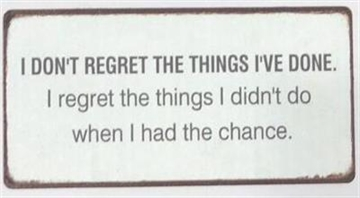 "Magnet 5x10 cm - ""I don't regret the ....."""